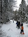 Winter Ecology Education (4476917556).jpg