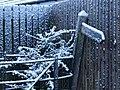 Wintry scene, Brampton - geograph.org.uk - 1639339.jpg
