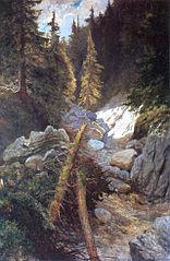 Wyschnięty potok w Tatrach
