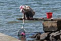Woman fishing for shore crabs 2.jpg