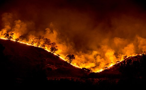 Tree ridge in flames during the 2018 Woolsey Fire, California, US.