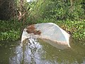 Wrecked boat left by floodwater - panoramio.jpg