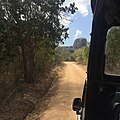 Yala Safari Trek.jpg