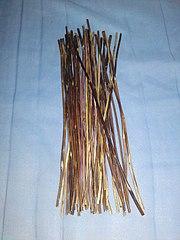 A bundle of thin sticks