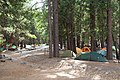 Yosemite Camp Four-5.jpg