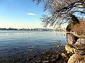 Zürichhorn 2012-02-24 15-41-43 (SX230).JPG