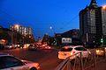 Zaeltsovskiy rayon, Novosibirsk, Novosibirskaya oblast', Russia - panoramio (10).jpg