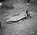 "Zahouc, Dromla nad Čezsočo. Vol s ""senmi"" za prevažanje sena v hribovitih senožetih 1952 (2).jpg"