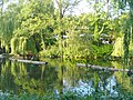 Zoo Berlin - Intercontiteich (Intercontinental Pond) - geo.hlipp.de - 40699.jpg