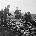 Zuid-Nederland. Reportage over de gevaren van mijnen en achtergelaten munitie vo, Bestanddeelnr 901-2844.jpg