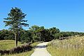 Zwin Natuurpark R23.jpg