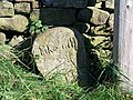 'Take Off' Stone, near Strines Inn - geograph.org.uk - 986004.jpg