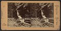 (Central?) cascade, Watkins Glen, N.Y, from Robert N. Dennis collection of stereoscopic views.png