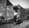 """Ženske raznašajo gnoj na glavi v """"pleturju"""" 1950.jpg"""