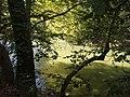 Κοιλάδα Τεμπών - Αγία Παρασκευή - Πηνειός Ποταμός.jpg