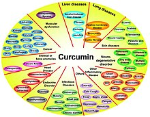 Effect of curcumin on various proinflammatory diseases.