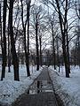 Дорожка в парке - panoramio.jpg