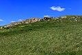 Живописный каменный карниз - panoramio.jpg