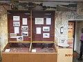 Зал археологии (музей ТюмГУ) 03.JPG