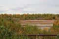 Золоотвал ГРЭС-2 - panoramio.jpg