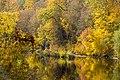 Золотая осень, Дениши - panoramio (5).jpg