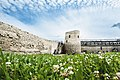 Изборск, Изборская крепость 2.jpg