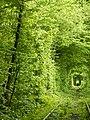 Клеванський парк, Рівненський район 2011.JPG