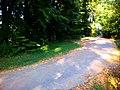 Коло на кінці дороги - panoramio.jpg