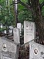 Могила Хренова - общий вид могилы (сложно до нее добраться - дорожки практически не оставили).jpg
