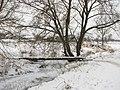 Пешеходный мост через реку Уша. - panoramio.jpg