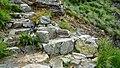 По Тарзановата пътека-трона на Тарзан -) - panoramio.jpg