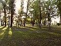 Ранок у парку Міського Саду.jpg