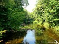 Река Сарьянка - panoramio (1).jpg