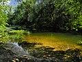 Река медведица - panoramio.jpg