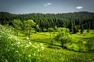 Rhodope Mountains mountain range in Southeastern Europe