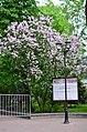 Сад Аквариум в Москве. Фото 1.jpg