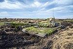 Тактическое учение с подразделениями мотострелковых бригад (Краснодарский край) 8.jpg