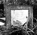 Цвинтар на Личакові 117.jpg