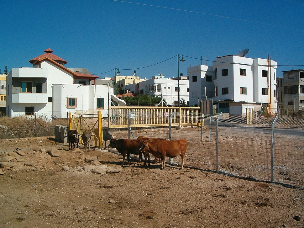 שער הכניסה לחלקו הדרומי (הישראלי) של הכפר ע'ג'ר
