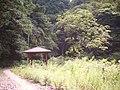 エビラ沢の滝 - panoramio - hideki higano (1).jpg