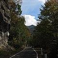 一ノ瀬林道-03 - panoramio.jpg