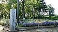 千波湖 - panoramio (52).jpg