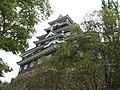 岡山城 - panoramio.jpg