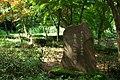 東高根森林公園 - panoramio (31).jpg