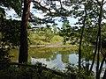 高森緑地 Takamori Open Space - panoramio.jpg