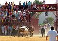 1218-Encierro en Loeches Madrid).jpg