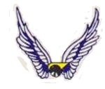 124 Observation Sq emblem.png