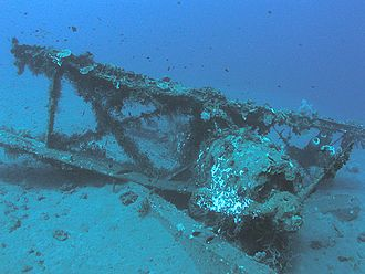Mitsubishi F1M - Undersea relic of a Mitsubishi F1M.