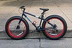 15-07-19-Fahrradcorso-RalfR-DSCF6576 1.jpg