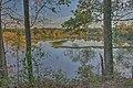 15-30-056, wetlands - panoramio.jpg